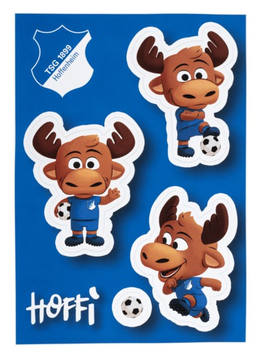 TSG Sticker card Hoffi