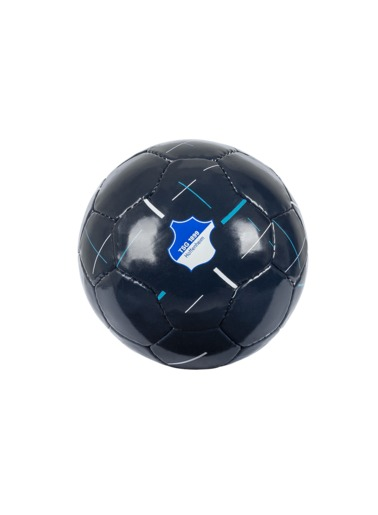 TSG Mini Football Blue
