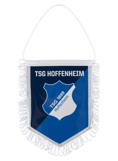 TSG-Car Banner Set of 2