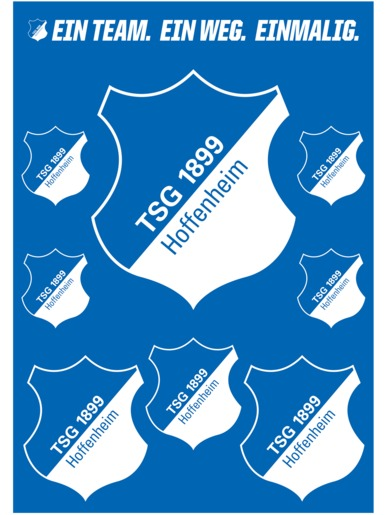 TSG sticker card emblem blue