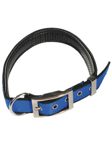 TSG dog collar